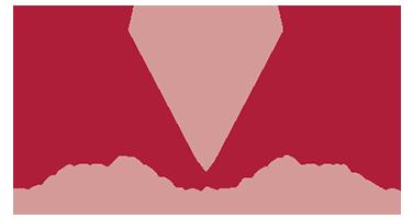 Logo van RAAK Advies - Tender, project en organisatie